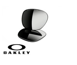 Lentes de Recambio Oakley OO9013 Frogsking Black Iridium Polarized